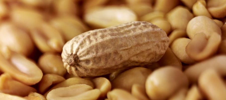 Food Allergies are On the Rise in the US – How to Avoid Them by Stress Reduction and Some Simple Lifestyle Changes