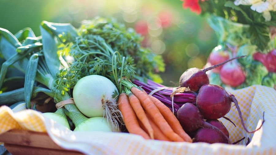 Are Organic Diet Plans Best for Health and Weight Loss?