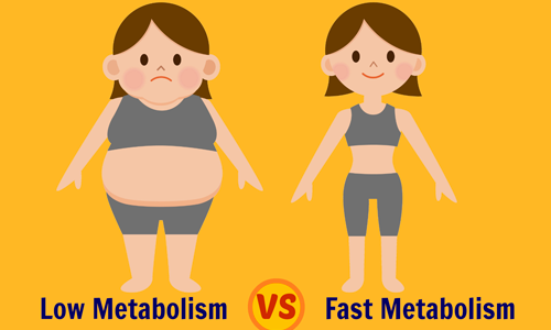 15 Things That Slows Down Your Metabolism